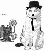 ICONIC CATS