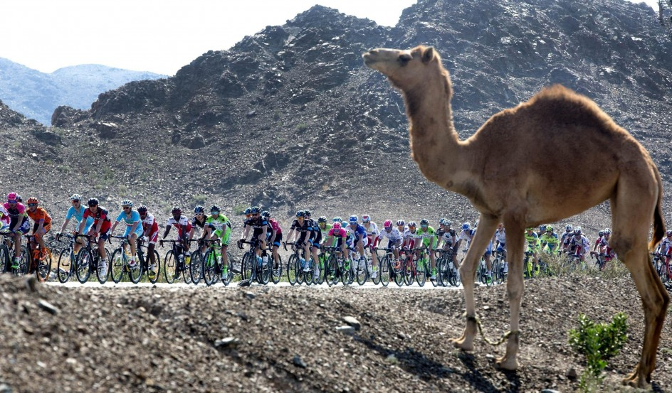 Tour de Dubai