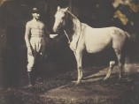 Horse and Groom 1855, Salted paper print