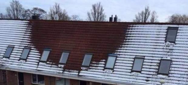 Descubren una plantaciónilegal de marihuana en Holanda gracias a la nieve