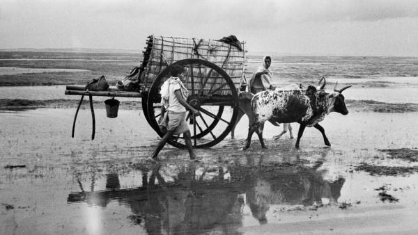 Between Konark and Puri, Orissa, India, 1956