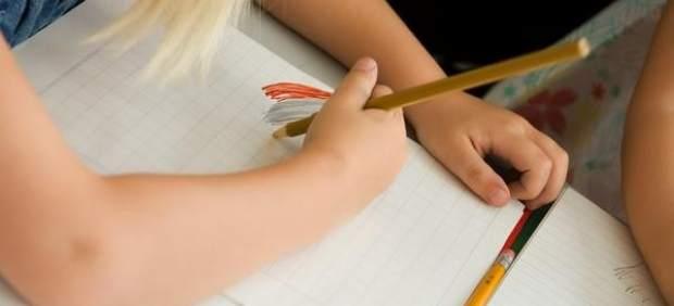 Méndez de Vigo quiere incluir la educación europea en los colegios españoles
