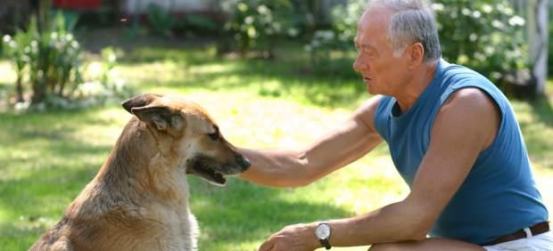 Perro y hombre
