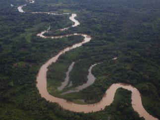 Selva de La Mosquitia o Costa de los Mosquitos (Honduras)