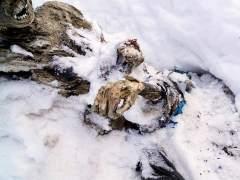 Momias en M�xico
