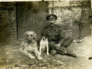 Staff Sergeant (Horse Farrier) of the Army Service Corps (ASC) with the Corps pet dogs, Hissy and Jack. France, August 1916