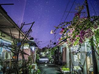 Back alley - Yong Lin Tan, Winner, Environment