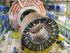 Una comadreja estropea y paraliza el Gran Colisionador de Hadrones del CERN