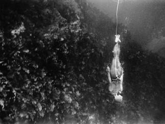 Fosco Maraini, The Enchantment of the Women of the Sea, Japan, 1954