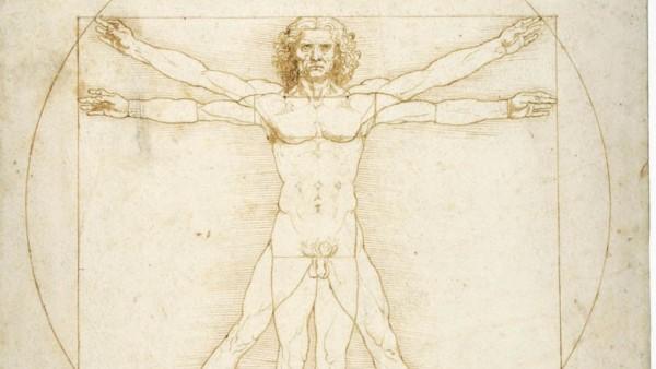 El famoso 'Hombre de Vitruvio' de Leonardo da Vinci.