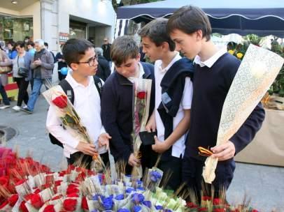 Sant Jordi adolescente