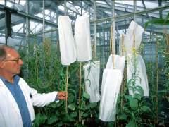 Bayer ofrece 55.200 millones de euros por Monsanto