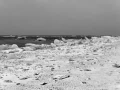 Analizan hielo del Oc�no �rtico para estudiar el cambio clim�tico