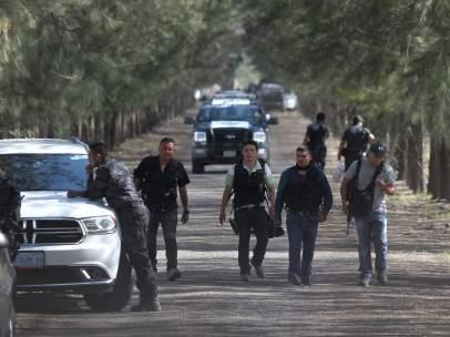 Violencia en Michoac�n