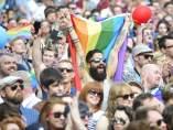 Referéndum sobre el matrimonio gay en Irlanda