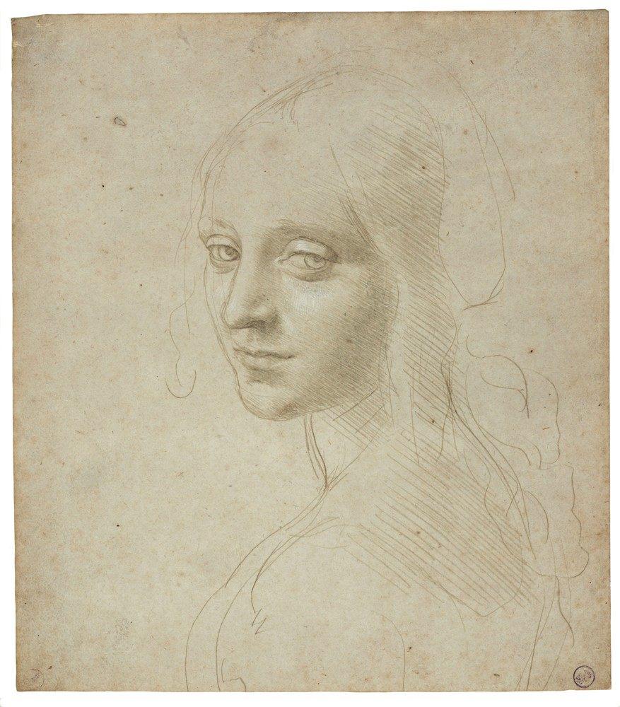 Los dibujos de Leonardo belleza y ciencia sobre el papel