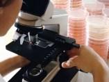 Bioquímica en un laboratorio