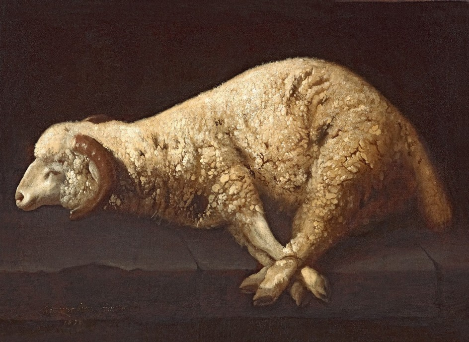Francisco de Zurbarán - Agnus dei, ca. 1635-1640 - The San Diego Museum of Art