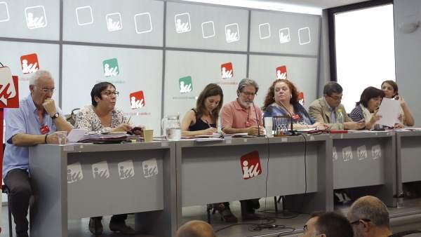 Consejo Político de IU