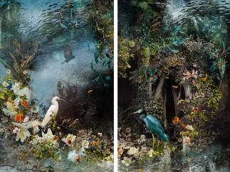 Ysabel LeMay, Reflection, 2014