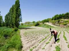 Agroecología: otra agricultura es posible