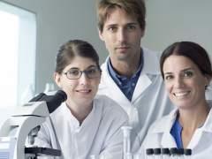 Las Ingenier�as y las titulaciones de Ciencias de la Salud tienen una mejor inserci�n laboral
