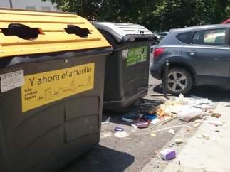 Basura tirada fuera del contenedor en la zona de Avenida Cervantes en Granada.