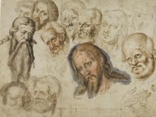 Lucas Cranach der Jüngere, Studien von Köpfen und Händen, 1558