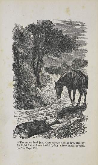 An illustration from the 1877 edition of Anna Sewells Black Beauty
