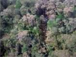 Accidente de avión en Papúa