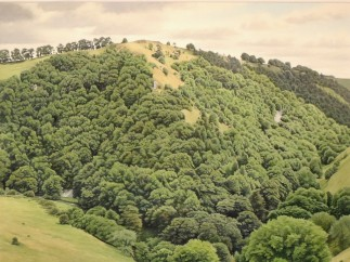 Roger Allen, Wolfscote Dale from Gipsy Bank