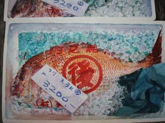 John Batty, Red Bream Tokyo Fish Market
