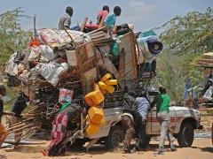 Todos los conflictos y crisis humanitarias, condensados en Perpi��n en Visa pour l'Image