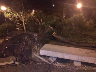 Destrozos en Aranjuez a causa de la tormenta