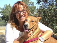 Una familia adopta al perro apu�alado en la nuca