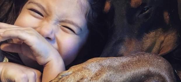 'La bella y la bestia': una niña de cuatro años y su doberman arrasan en Instagram
