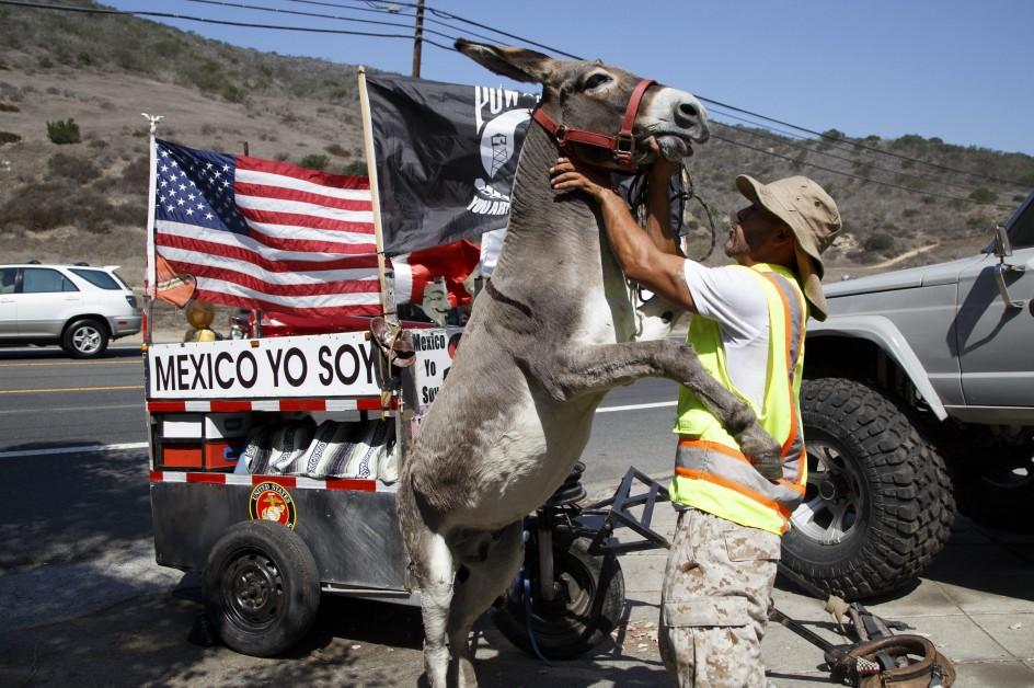 De Tijuana a Washington a lomos de un burro