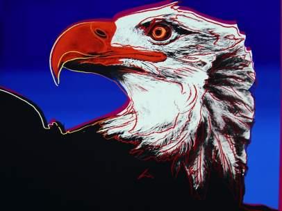 'Bald Eagle'
