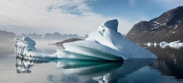 El calentamiento del Ártico amenaza la supervivencia de un ave porque su pico se acorta