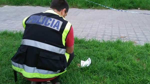 Hallan una granada en un jardín de Valencia