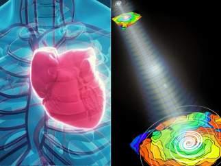 Corazón y optogenética