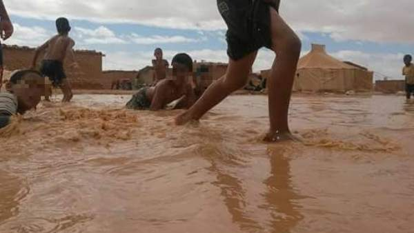 Lluvias torrenciales en el Sahara Occidental