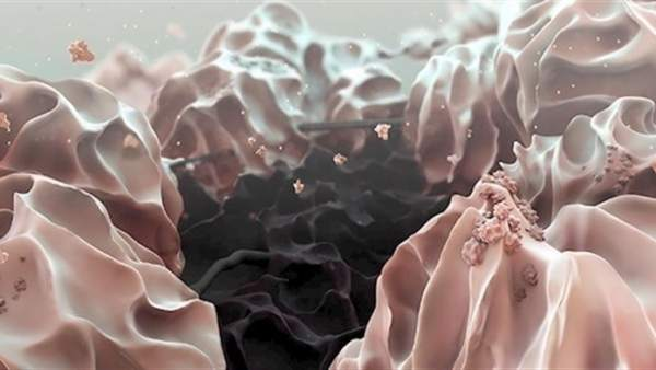 Litio-oxígeno