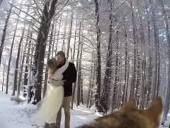 Graban el v�deo de su boda con una c�mara sobre su perra