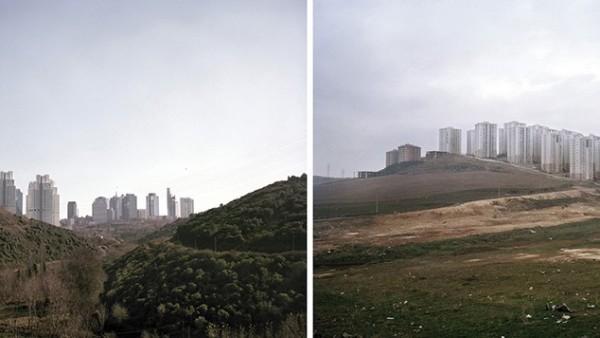 SERKAN TAYKAN, Shell, 2012 – 2013