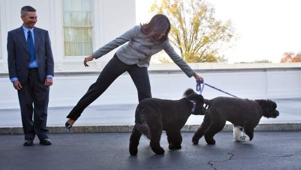 Perros de Obama