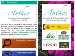 Anthos, el proyecto de información sobre la flora silvestre, tiene app para móvil