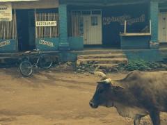 Un poema fotográfico dedicado a las 'ikinga', las bicis de Burundi