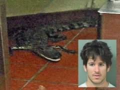 Un joven arroja un caimán al interior de un restaurante de comida rápida