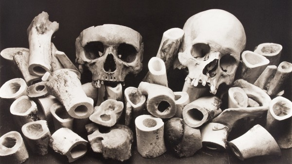 IRVING PENN - Bone Forest, New York, 1980